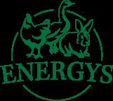 Logo energys